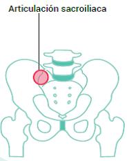 Articulación Sacroiliaca